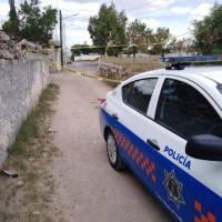 Fueron sorprendidos mientras desvalijaban un taxi en La Estancia San Juan del Río