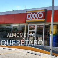 Encuentran un alicante en tienda OXXO de Río Moctezuma San Juan del Río
